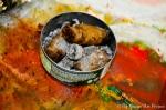 Contemporary Cuban Painter Sergio Payares Photos by Leticia del Monte (5 of 76)